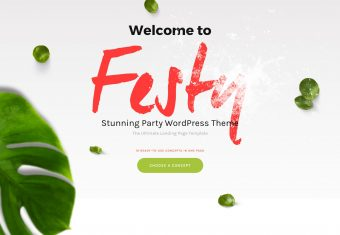 festy festival wordpress theme