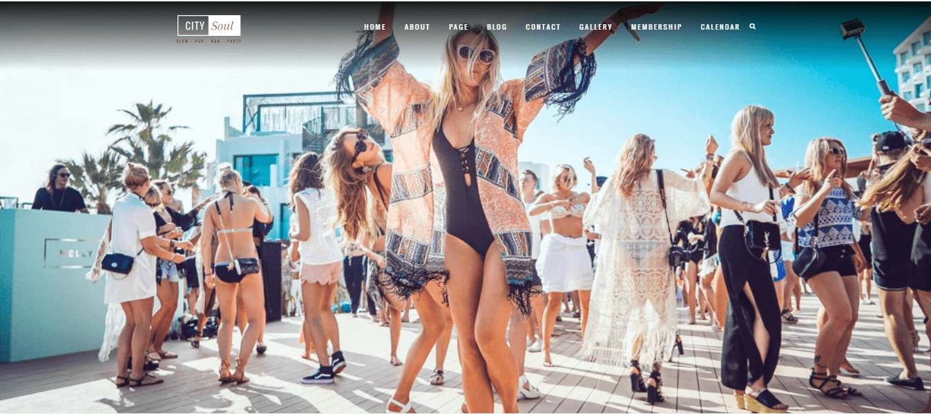 party wordpress theme