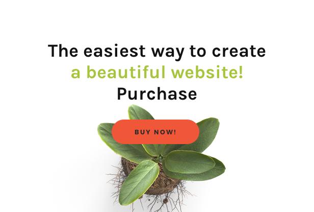Download Festy WordPress Theme